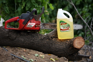 Chainsaw and bottle of canola oil
