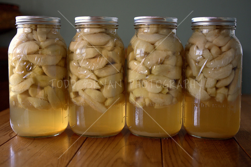Four large half gallon jars of sliced green Granny Smith apples, preserved in a sweet golden syrup