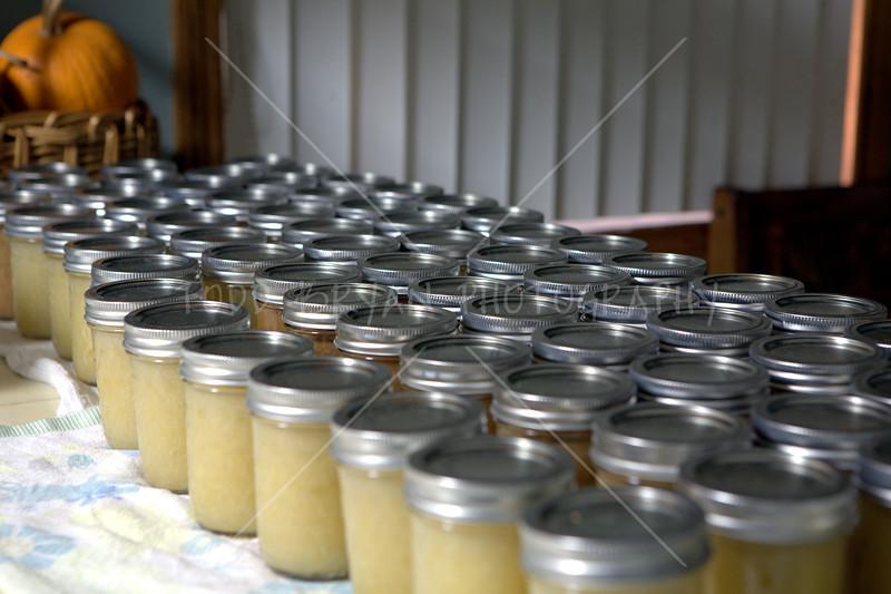 72 beautiful jars of homemade applesauce made from green Granny Smith apples and Florida Crystals non-GMO Natural sugar