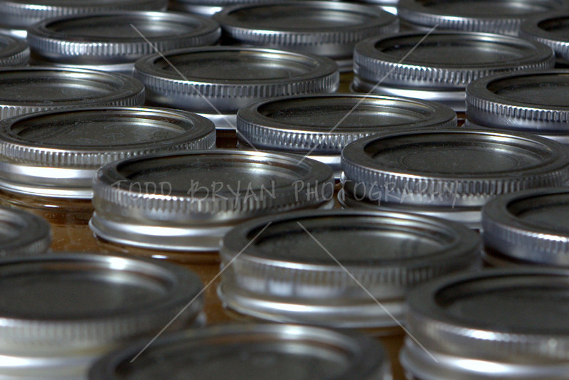 A sea of applesauce canning lids makes for a beautiful photograph