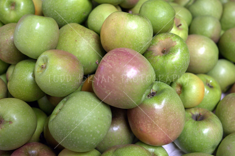 A heaping stack of freshly picked Granny Smith green apples awaits processing