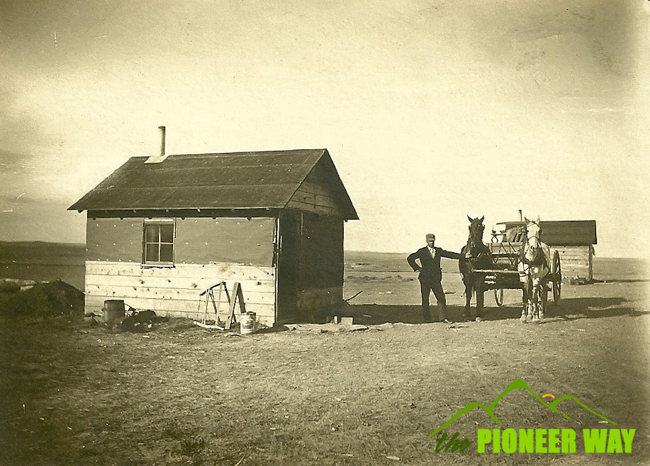 My great grandfather and his team of horses out on the farm in Mitchell, South Dakota.